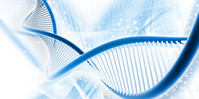 DNA Basics, Extraction and Analysis